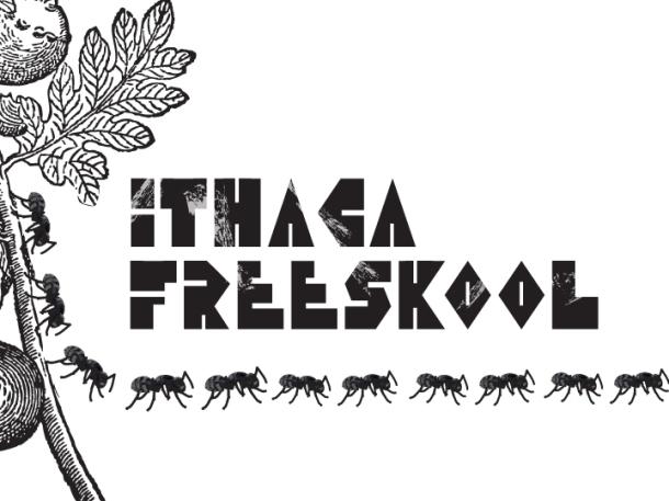 freeskool ants